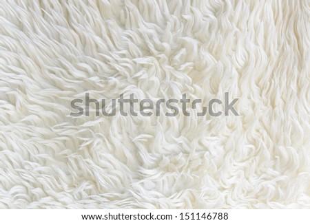 Texture of white carpet background - stock photo