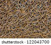 Texture of wood bamboo in pattern design for chair or wall. Weaving work wood pattern - stock photo