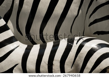 Texture of zebra model - stock photo