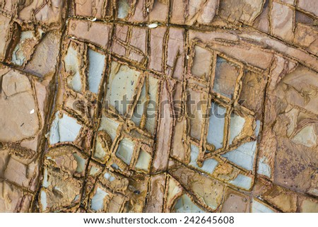 texture on a rock  - stock photo