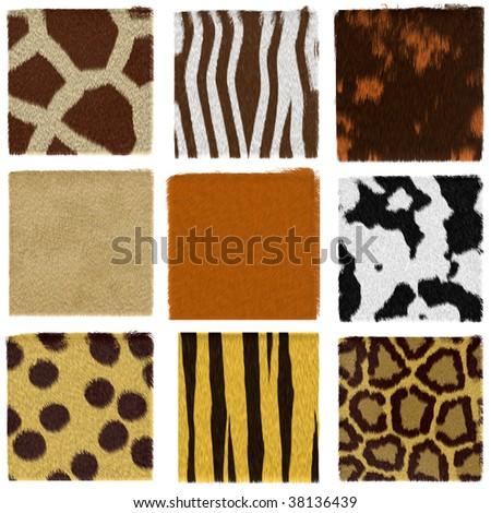 Texture set of animal fur - stock photo