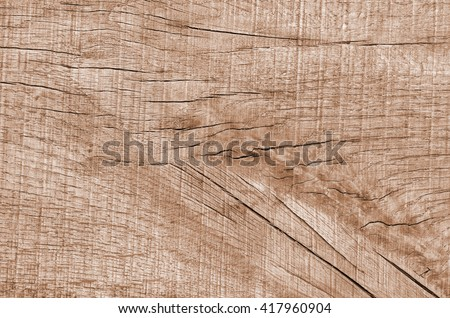 texture wood background. texture wood background. texture wood background. texture wood background. texture wood background. texture wood background. texture wood background. texture wood background.  - stock photo