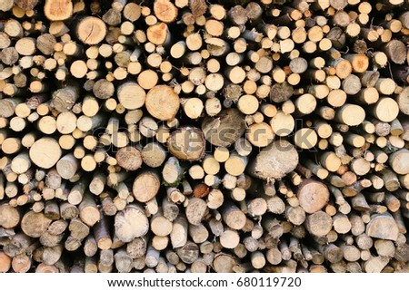 Textured background of cut timber logs