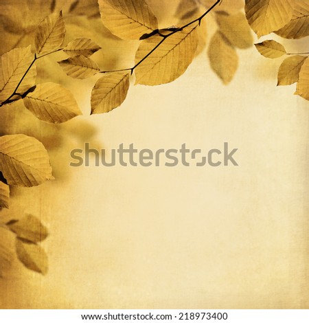 Textured fall background with branches of brown and yellow leaves  - stock photo