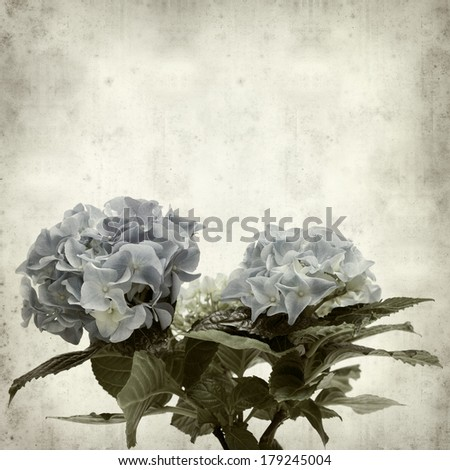 textured old paper background with  - stock photo