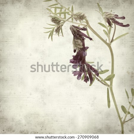 Stock images royalty free images vectors shutterstock - Eternity gran canaria ...