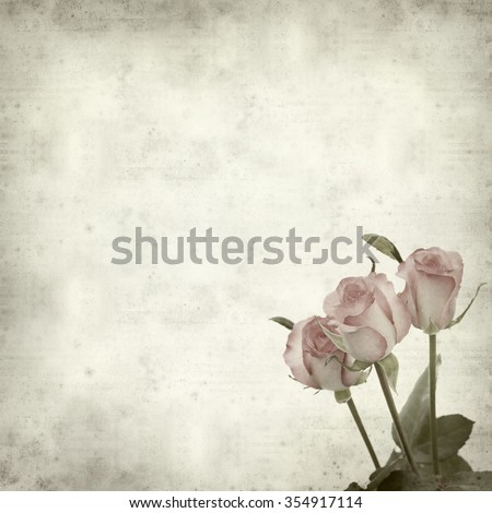 textured old paper background with gentle pink rose flower