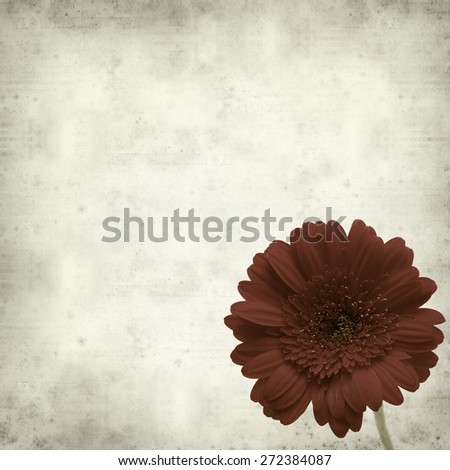 textured old paper background with gerbera
