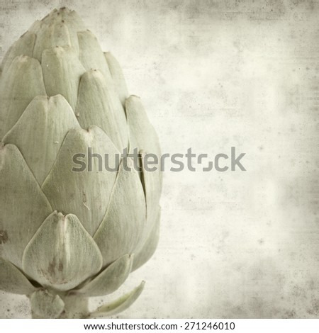 textured old paper background with globe artichoke - stock photo