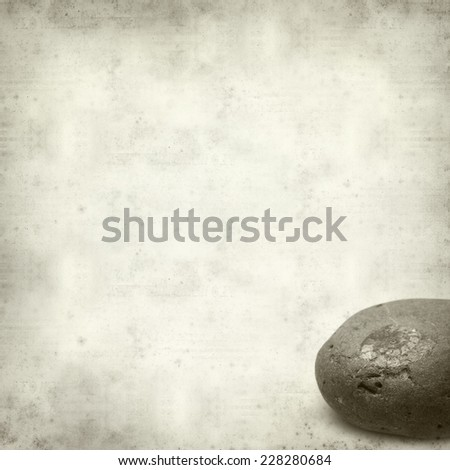 textured old paper background with pebble with ammonite fossil - stock photo