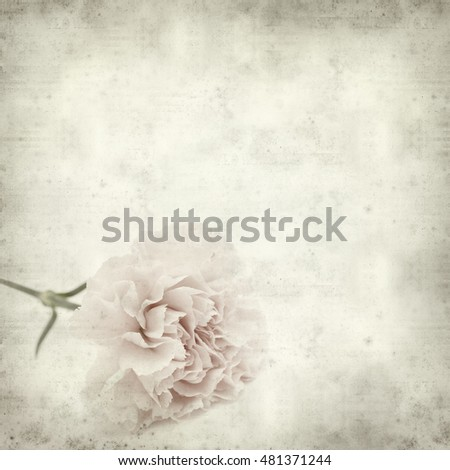textured old paper background with pink carnation flower