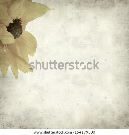 textured old paper background with rudbeckia
