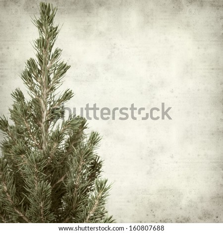 textured old paper background with small fir tree - stock photo
