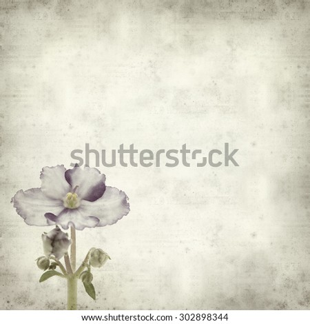 textured old paper background with variegated african violet