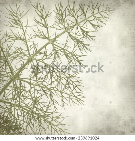 textured old paper background with young fennel leaf - stock photo
