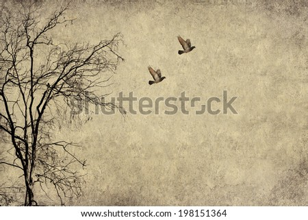 Textured old paper sepia background with naked tree and flying birds (with copy space) - stock photo