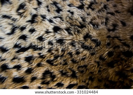 textures animal skin - stock photo