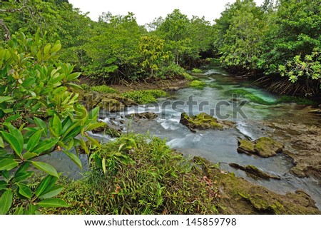 Tha Pom mangroves forest, Krabi, Thailand.  - stock photo