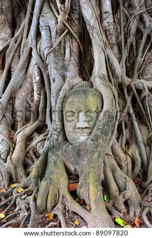 Thai Buddha - stock photo