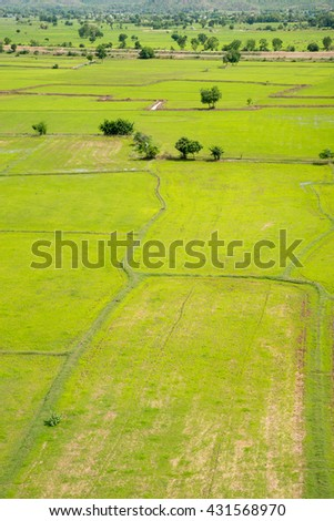 Thai countryside with multiple rice paddies, in vertical orientation. Kanchanaburi, Thailand.