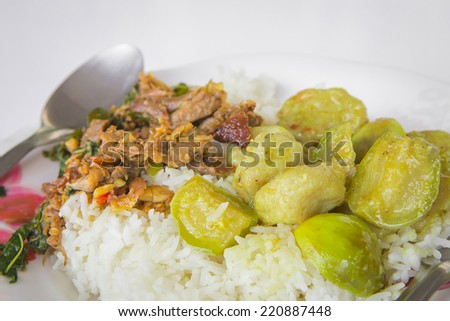 Thai food  rice with curry soup - stock photo
