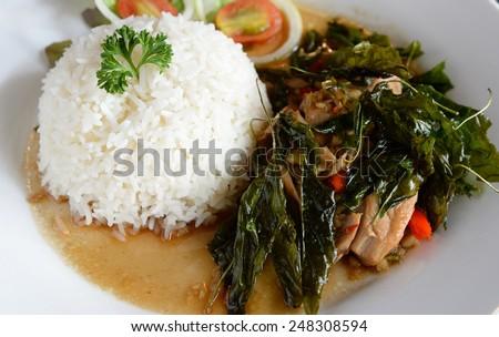 Thai fried chicken basil with rice  or Pad Kaprao Kai in Thai name - stock photo