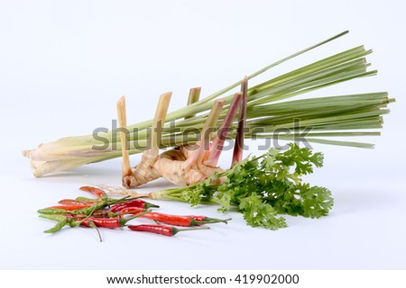 Thai herb and spice ingredients for asian food on white background ( Galangal, lemongrass, coriander, chili ) - stock photo