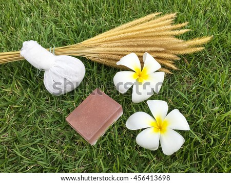 Thai herbal compress for spa with white plumeria flower (frangipani) and herbal Soap on green grass - stock photo
