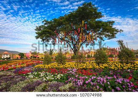 Thai lantern on a tree in colorful flower garden, Chiang Mai, Thailand - stock photo