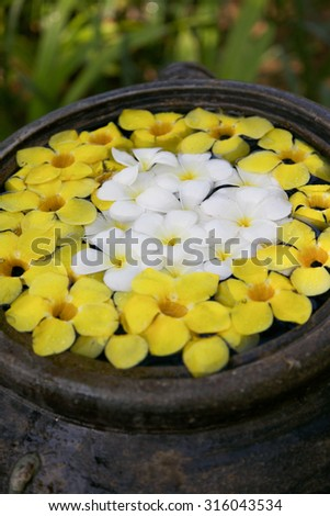 Thai spa image - travel and tourism. - stock photo