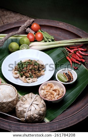 Thai Spicy minced meat salad.Thai northern food style, minced pork mash with spicy.(selective focus) - stock photo