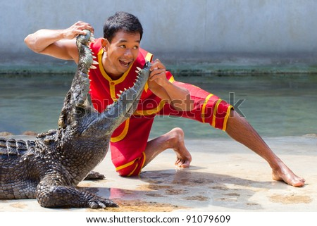 """THAILAND, BANGKOK - DECEMBER 19: An unidentified zoo keeper puts a head in a mouth of the crocodile as  part of """"Show of crocodiles"""" show on December 19, 2011 in Bangkok, Thailand. - stock photo"""