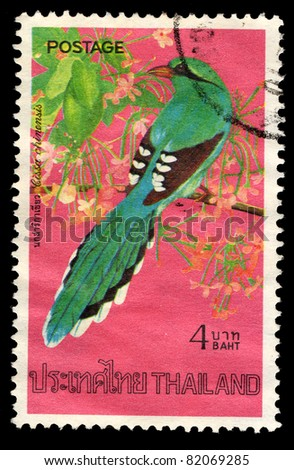 THAILAND - CIRCA 1976: A stamp printed in Thailand shows Cissa chinensis (Green Magpie), circa 1976