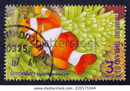 THAILAND - CIRCA 2006 :A stamp printed in Thailand shows image of Amphiprion ocellaris Cuvier, circa 2006 - stock photo