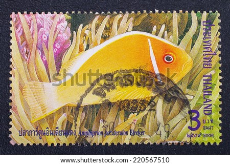 THAILAND - CIRCA 2006 :A stamp printed in Thailand shows image of Amphiprion perideraion Bleeker, circa 2006 - stock photo