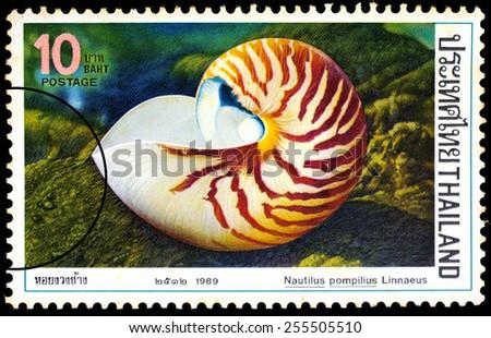 THAILAND - CIRCA 1989 : A stamp printed in Thailand shows image of Nautilus pompilius Linnaeus, circa 1989 - stock photo