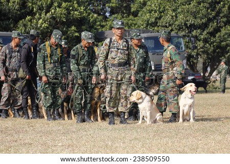 THAILAND- DECEMBER 18: Training Dogs of War, Thailand's Army on December 18, 2014 in Saraburi, Thailand.