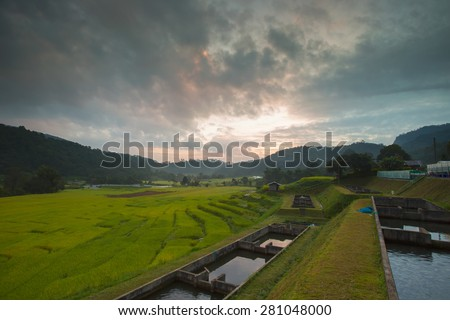Thailand farmers landscape  - stock photo