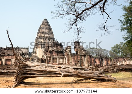 THAILAND - FEBRUARY 16:  Dried fallen tree at Phimi National Park on February 16, 2014 in Nakhon Ratchasima Province, The Northeast. - stock photo