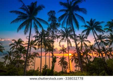 THAILAND, February - 20, 2014. Sunset on the background of the sea and tropical palms - stock photo