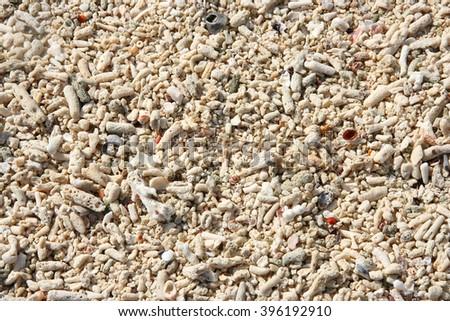 thailand islands sea shore beach sand corals shells ground  - stock photo