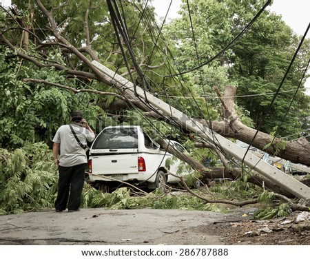 Thailand - June  9, 2015 : Fallen tree on a car on the street in Bangkok