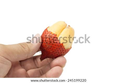 Thailand Salak tropicana fruit in hand - stock photo