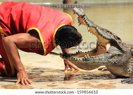 "THAILAND, SAMUTPRAKAN -OCT 21, 2013: Traditional for Thailand ""Show of crocodiles"".The trainer put his head into the jaws of a crocodile on October 21, 2013 in Crocodile Farm SAMTPRAKAN, Thailand  - stock photo"