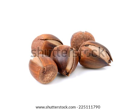 thailand sweet chestnut on white background