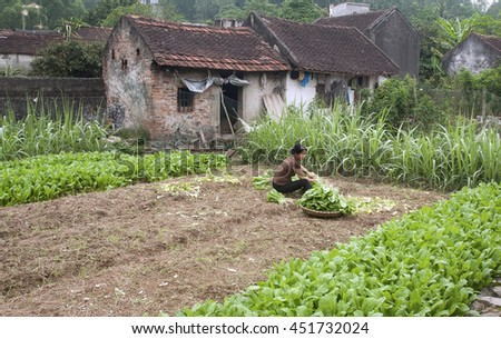 THANH HOA, Vietnam, July 12, 2016 vegetable garden farmers, rural areas in Thanh Hoa, Vietnam
