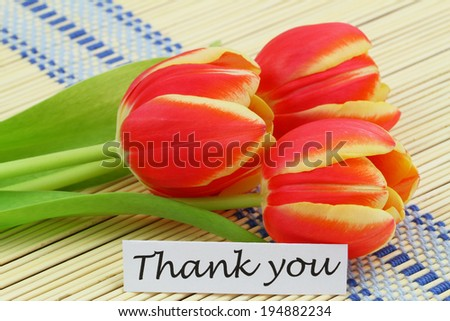 Thank you card with red and yellow tulips  - stock photo