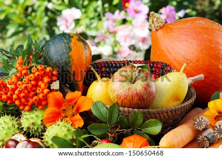 Thanksgiving, autumn fruits - stock photo