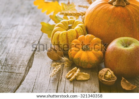 Thanksgiving decorations - pumpkins nuts oat, rustic wood background, toned