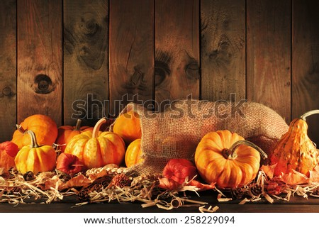 Thanksgiving - different pumpkins in jute bag on straw with copyspace in dark sunset light - stock photo